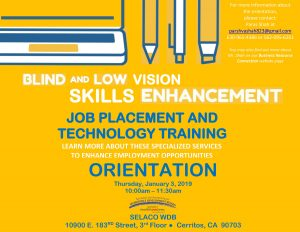 JOB PLACEMENT AND TECHNOLOGY TRAINING